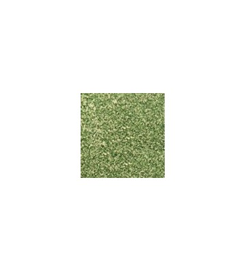 Płyta solna 50x50 5 kg zielona